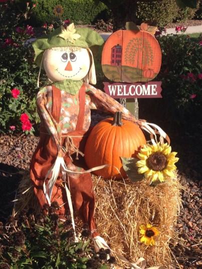 Casual Diy Outdoor Halloween Decor Ideas For Your Frontyard 26