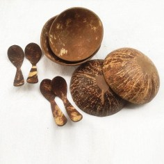 Perfect Diy Coconut Shell Ideas For Everyonen That Simple To Try 30