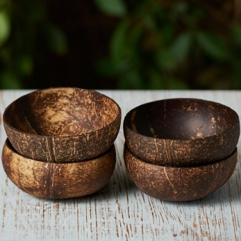 Perfect Diy Coconut Shell Ideas For Everyonen That Simple To Try 36