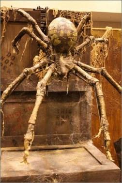 Wonderful Halloween Design Ideas Themed Tomb And Skull Inspire 10