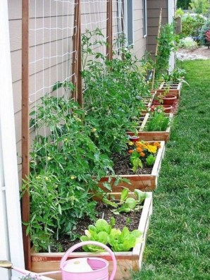 Rustic Small Backyard Design Ideas With Vertical Garden To Try Asap 25