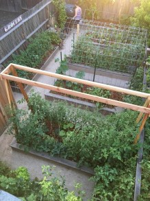 Rustic Small Backyard Design Ideas With Vertical Garden To Try Asap 32