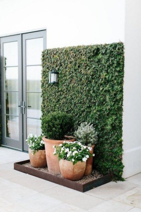 Rustic Small Backyard Design Ideas With Vertical Garden To Try Asap 33