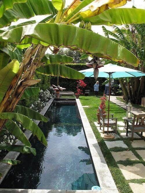 Surprising Tropical Pool Landscaping Design Ideas To Try Soon 46