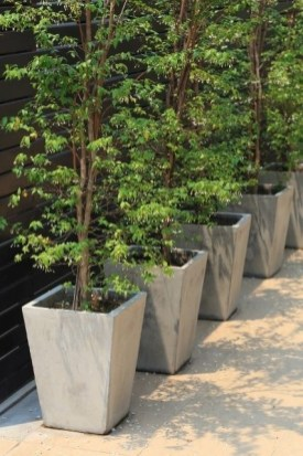 Relaxing Diy Concrete Garden Boxes Ideas To Make Your Home Yard Looks Awesome 32