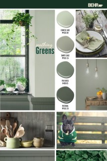 Sophisticated Home Decoration Ideas With Green Paint Combination 47