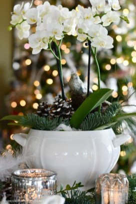 Brilliant Tropical Winter Decor Ideas That Bring Your Home Into Holiday Feel 36