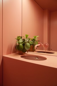 Sophisticated Pink Colors Design Ideas To Transform Your Bathroom 02