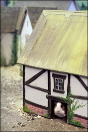 Affordable Fairy Tale Cottage Design Ideas With Three Little Pigs 27
