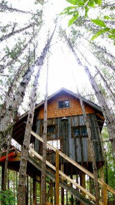 Sparkling Treehouse Design Ideas With Recycled Materials That You Should Have 04