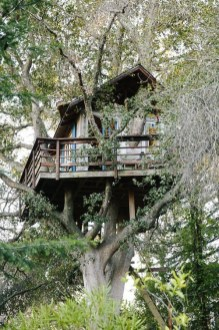 Sparkling Treehouse Design Ideas With Recycled Materials That You Should Have 20