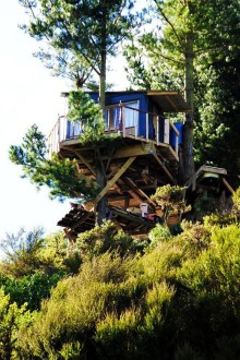 Sparkling Treehouse Design Ideas With Recycled Materials That You Should Have 23