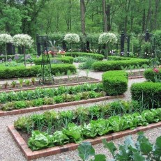 Rustic Vegetable Garden Design Ideas For Your Backyard Inspiration 22