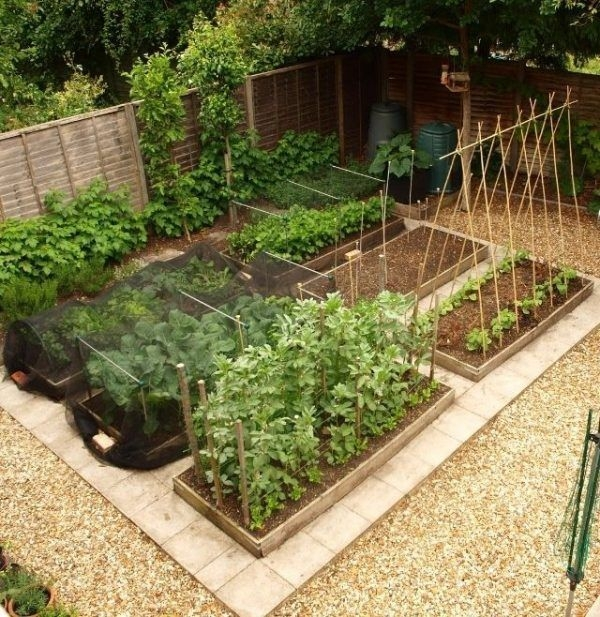 Rustic Vegetable Garden Design Ideas For Your Backyard Inspiration 31