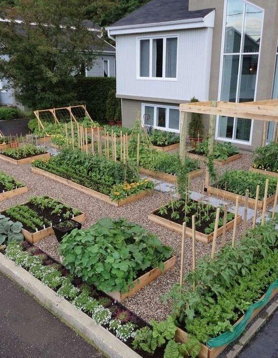 Rustic Vegetable Garden Design Ideas For Your Backyard Inspiration 43