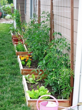 Rustic Vegetable Garden Design Ideas For Your Backyard Inspiration 48