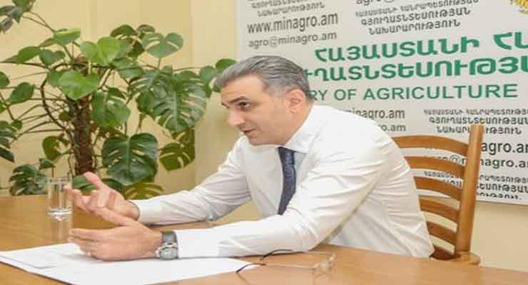 Ignati Arakelyan GMO