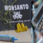 Does glyphosate cause cancer? Monsanto herbicide trials take shape in US
