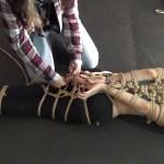 Girl ties up other girl with shibari bondage