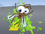 Windshield bug