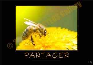 @PARTAGER-Verbe_OK_PostersGallery_copyr
