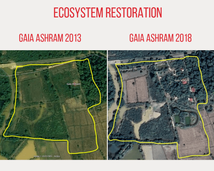 Gaia Ashram restoration regeneration