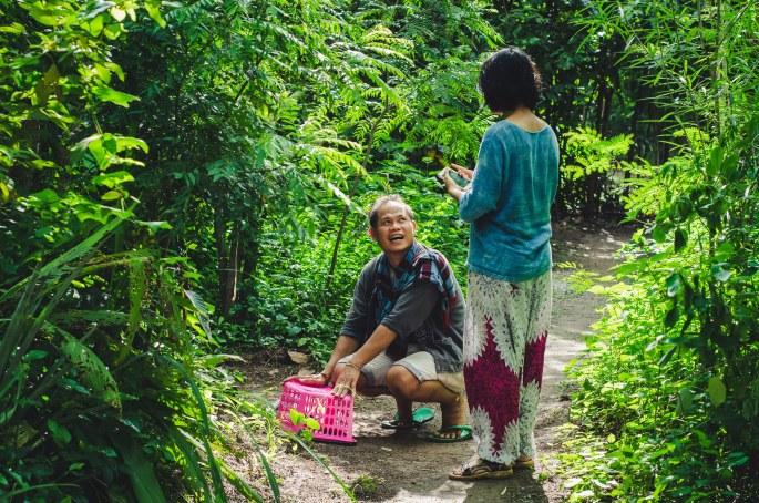 Food Forest at Gaia Ashram