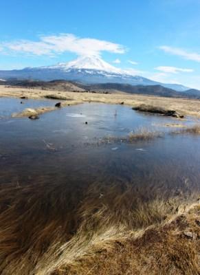 7 doc. Mt. Shasta, 1-16-2017 022