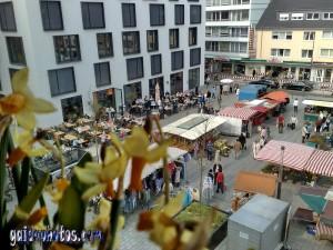 Köln-Rodenkirchen Wochenmarkt