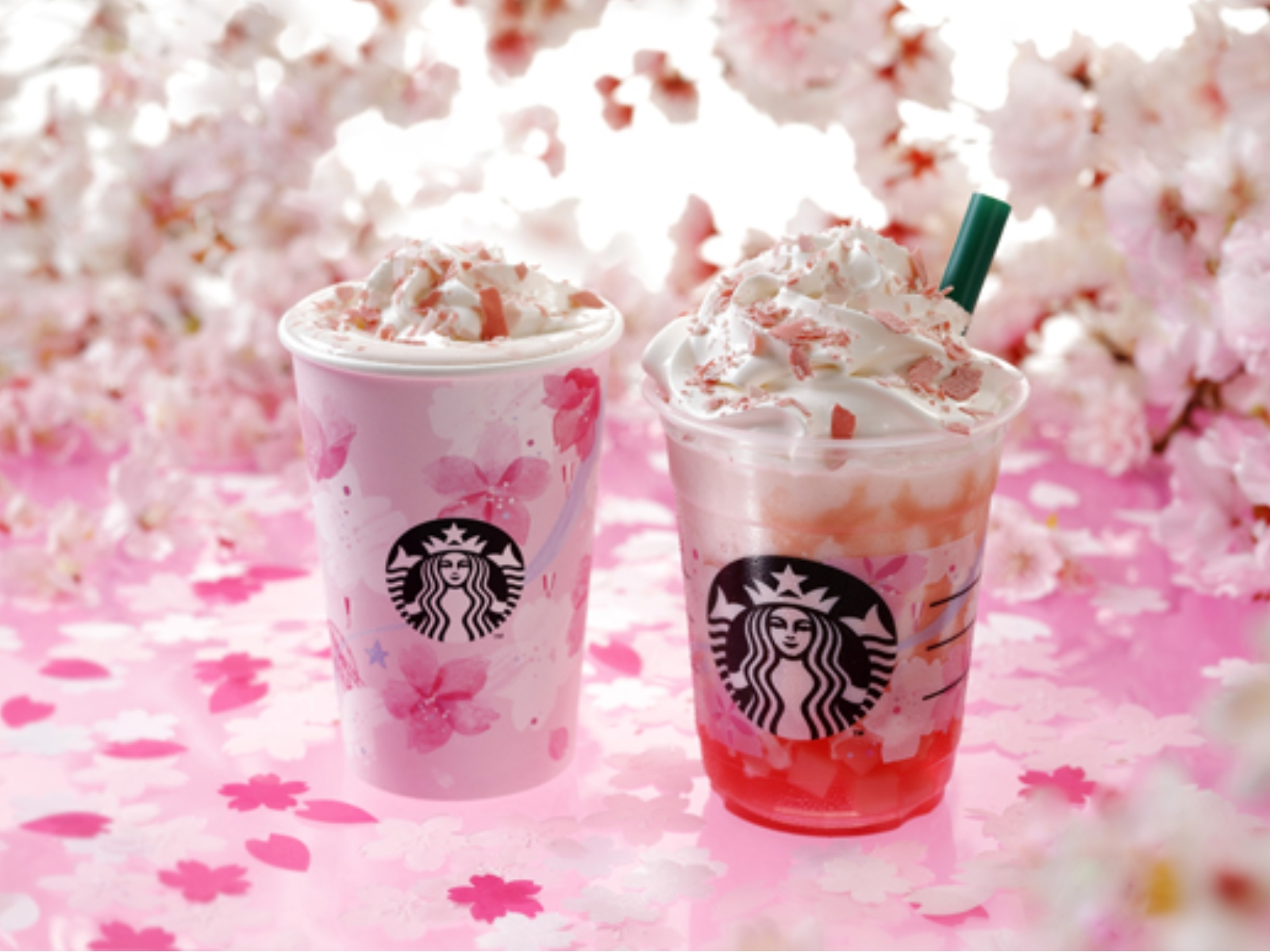 Fall Aesthetic Wallpaper Starbucks Has Started Selling Its Cherry Blossom Themed