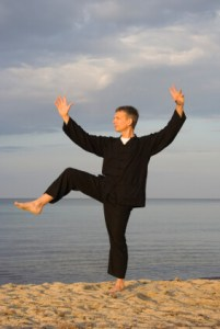 tai chi - posture kick with right heel