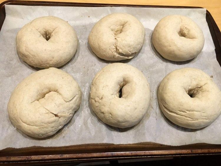proofing bagels