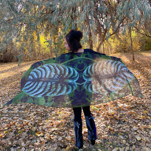 Gazelle Shawl in Modal in the Silver Elephant Ear Design, a photograph by Gail Russell Photographer, Taos, New Mexico