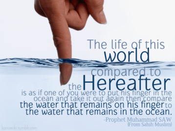 Hereafter compare to worldly life