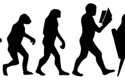 512px-Evolution-des-wissens