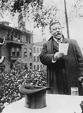 351px-Roosevelt_on_the_Stump,_1912