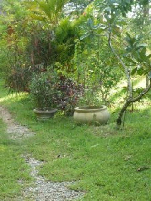 Un jardin à visiter en hypnose