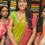 South Indian Style Of  Saree Draping In An Easy Way  – Saree Draping By Vidhya