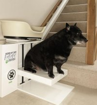 Absurd Canine Stair Lift Lets Plump Pups Rest Their Dogs ...