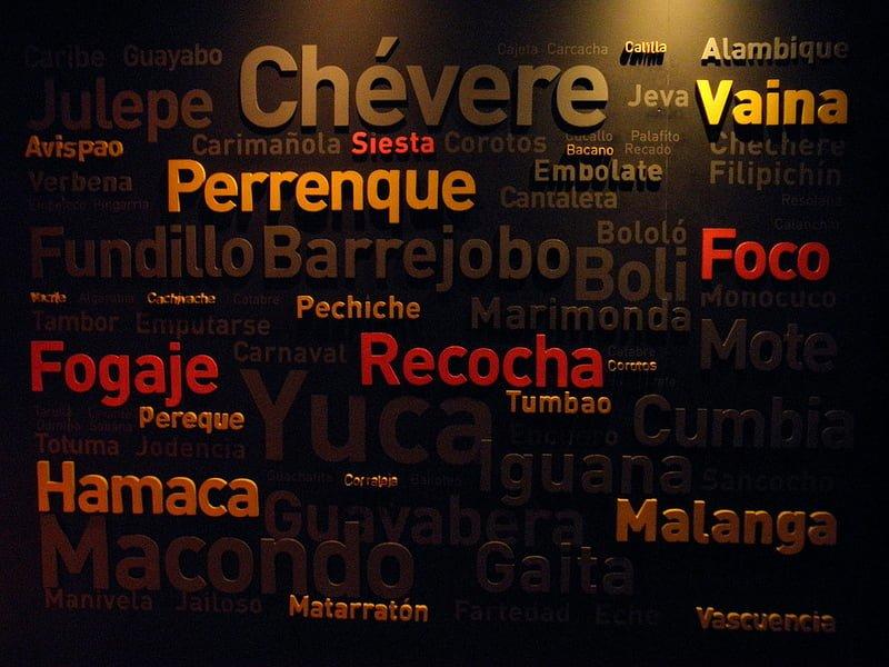 Photo:Nuevo vocabulario By:Alveart
