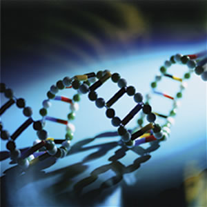 dna-pictures3