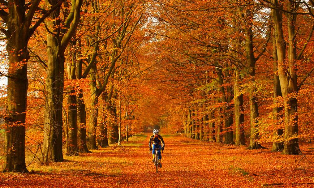 autumnc.cycling
