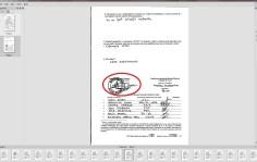 costiniuc gabriel 2014 prezidentiale presedinte 138