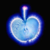 kirlian-photo-apple