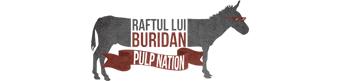 Raful lui Buridan