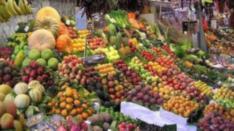 parkinson-pesticidas