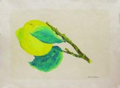 Massimo Catalani, Limone con Due Fogue, 2000, óleo sobre papel, 30 x 40 cm.