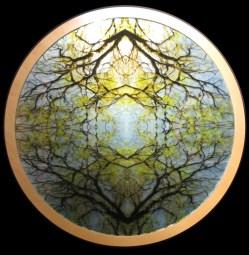 Mayte Espinosa, Rounded nature No. 1 , 2014, fotografía sobre espejo con marco de madera, 88 cm de diámetro