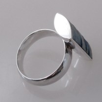 Titanium speaks (silver and titanium)