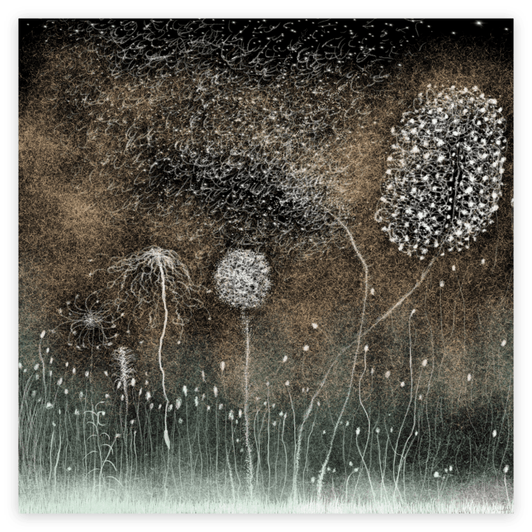 First image of 'White Nature' - Beautiful art print inspired by the mesmerizing nature of Occitanie, France. artist: Anne Turlais - Limited edition of 300. Nature Wall Art Print on Dibond.